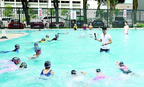 """会游泳才能拿优秀毕业生证书 福田这所小学盛产""""蛙王"""""""