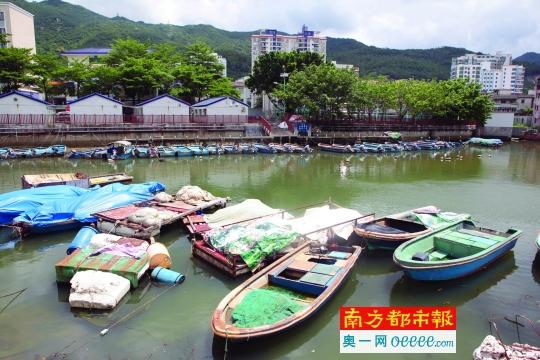 盐田最后的渔村:城市更新在即 渔民上岸 文化无处安放