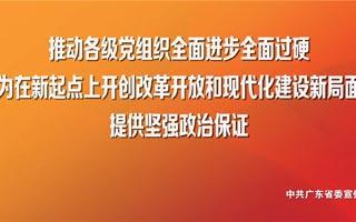 学习宣传贯彻习近平总书记视察广东重要讲话精神宣传画(八)