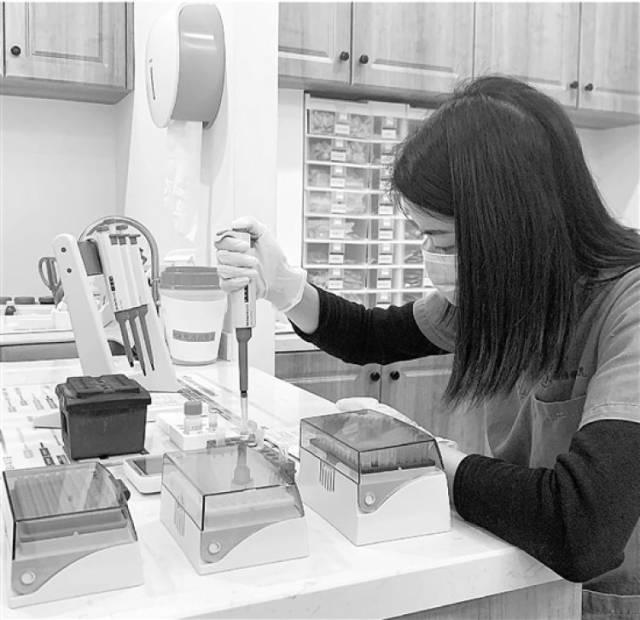 医生正在给宠物做PCR检测。