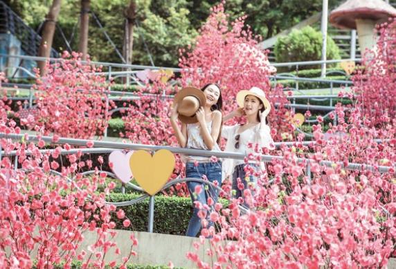 五一4天小长假,深圳旅游市场亮了!
