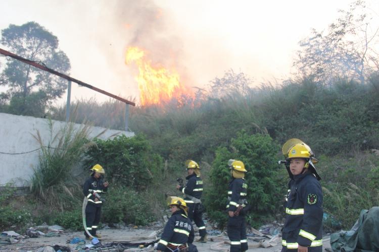 深圳一居民区附近发生山火! 消防人员及时扑灭火势未蔓延