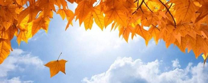 """为什么秋季易引发伤感?三招走出""""悲秋""""情绪"""
