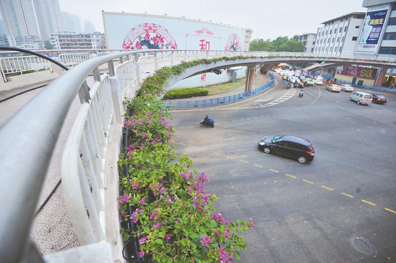 龙岗将再添一座人行天桥 在布澜路与甘李三路路口处