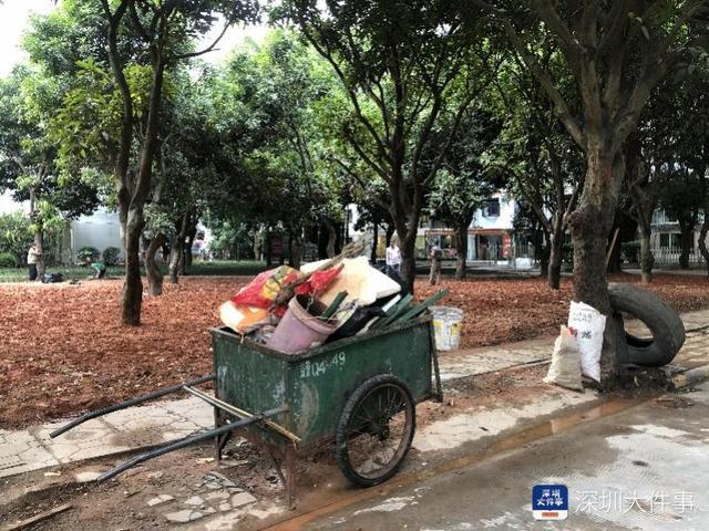 """益田村旁""""临时垃圾堆放点""""20年没搬 居民追问:生根了吗"""