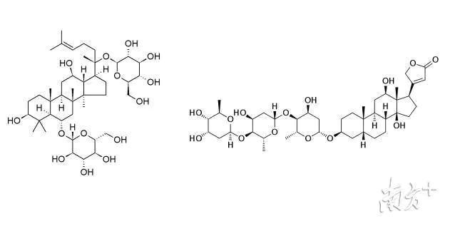 常用甾体类药物结构示例(王攀教授研究项目)