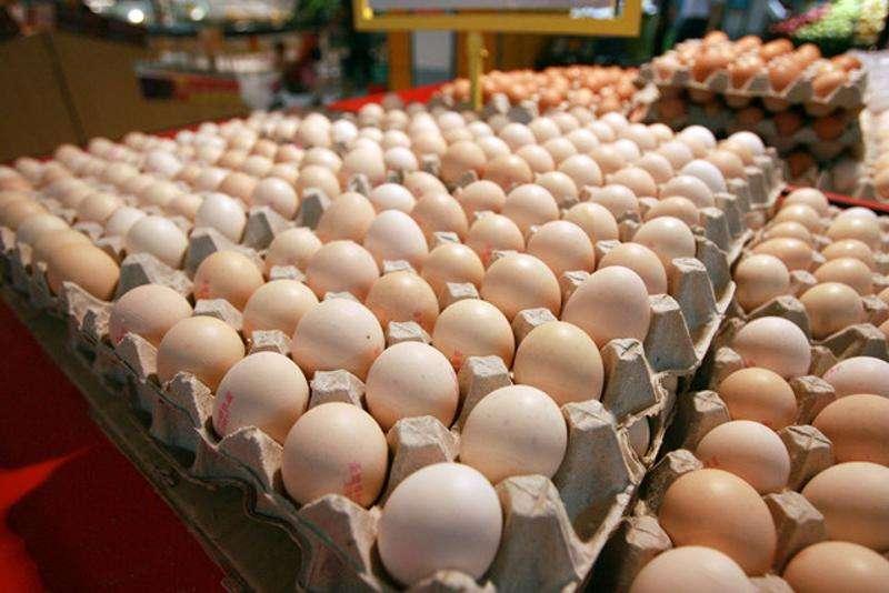 禽流感疫情已完成处置 不影响禽蛋供应