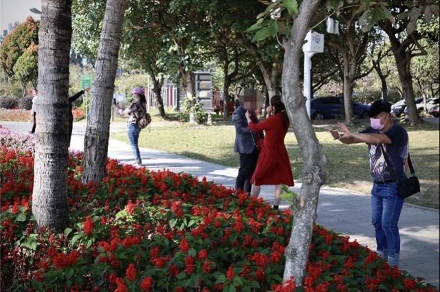 深圳多个公园周末人流明显增多