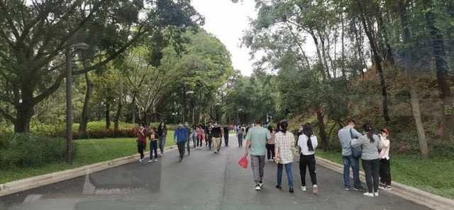 清明小长假深圳公园接待游客36万余人次