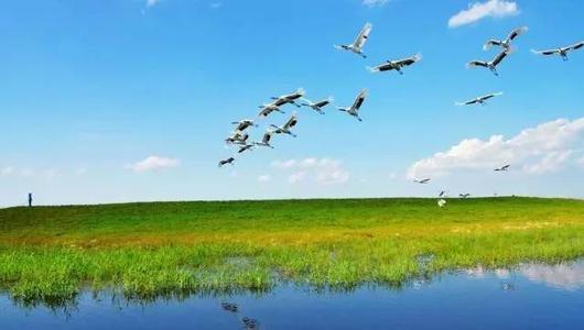 端午周边游仍是主流,草原游热度上涨746%