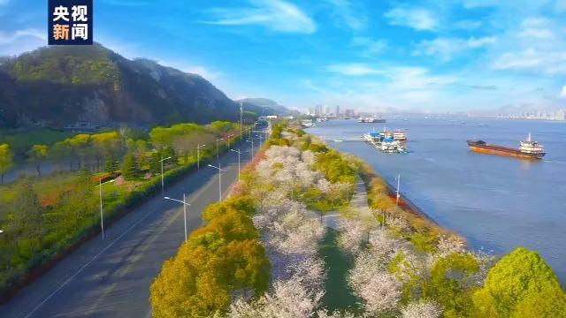 走向我们的小康生活丨江苏南京:还青山绿水 造金山银山