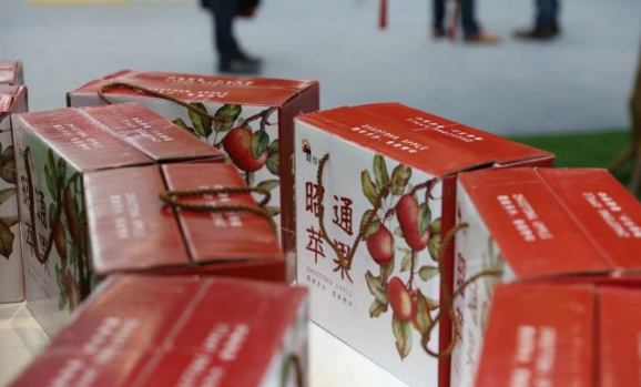 深圳市米袋子菜篮子联合会成立