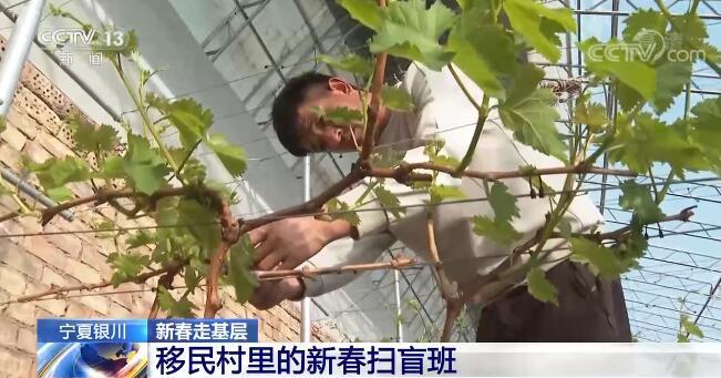 【新春走基层】宁夏银川:移民村里的新春扫盲班