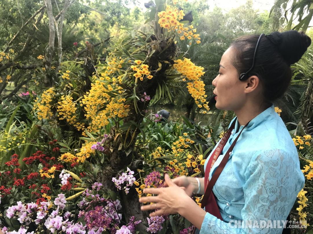 【沿着高速看中国】走进中国科学院西双版纳热带植物园