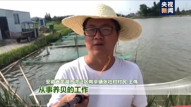 """走进乡村看小康丨这些贝类不是用来吃的?宝""""贝"""":我是村里的清道夫"""